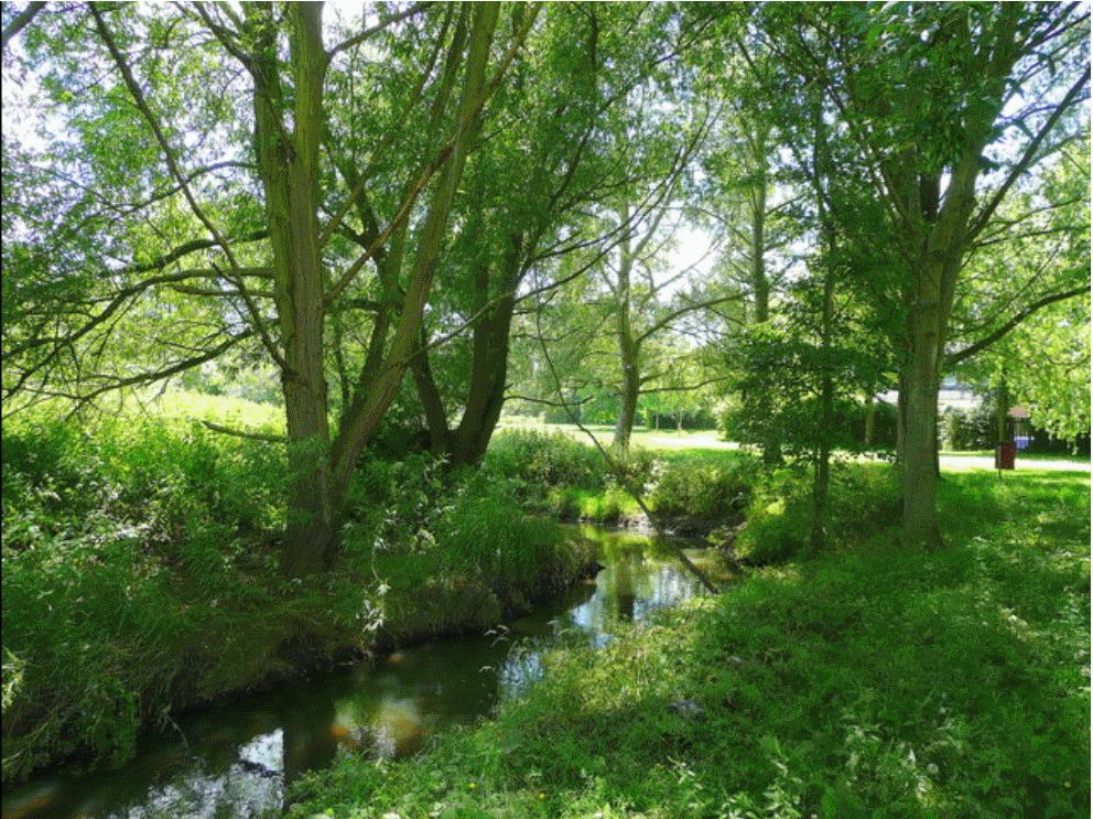 The Emm Brook